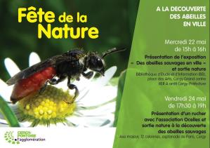 Animations fête de la Nature 2013