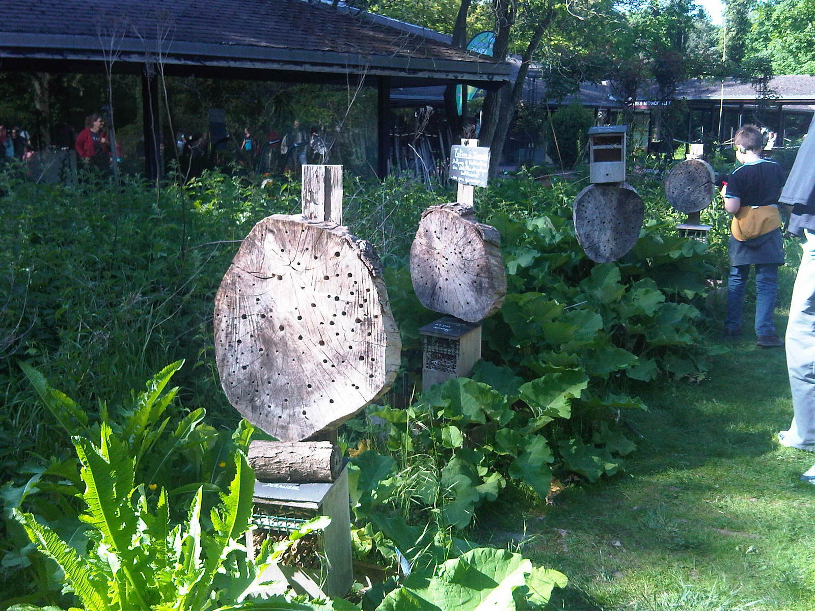 G te insectes nichoirs insectes insects hotel - Hotel a insectes ...